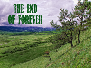 The_End_of_Forever